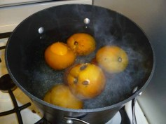 Boiling Tomatoes