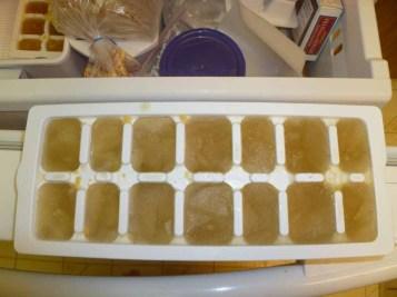 Frozen Stock Cubes