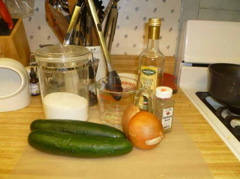 Marinated Cucumber Ingredients