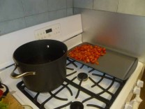 Water For Pasta, Tomatoes On Pan