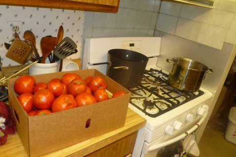 Box Of Tomatoes & Boiling Water