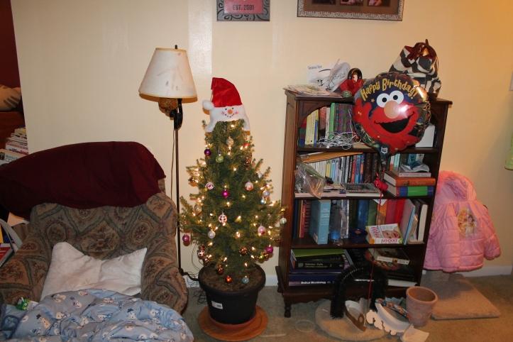 tiny christmas tree 2013