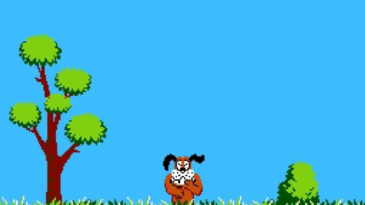 duck hunt dog