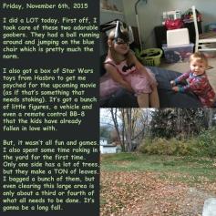 Friday, November 6th, 2015