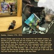 Sunday, January 17th, 2016