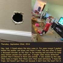 thursday-september-22nd-2016