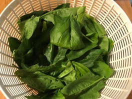 spinach from the garden